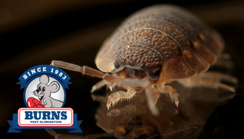 Burns pest elimination multifamily